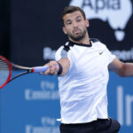 Grigor+Dimitrov+2016+Sydney+International+ZQ1iFBFft03l
