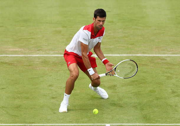 djokovic grass